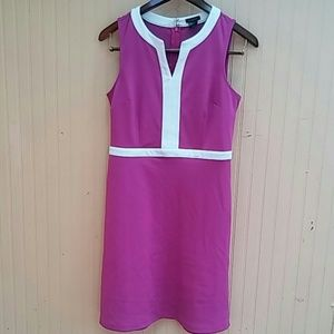 Ann Tailor Purple Sleeveless Dress Size 6